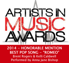 aima award honorable mention